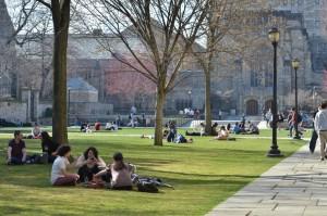 Yale University1