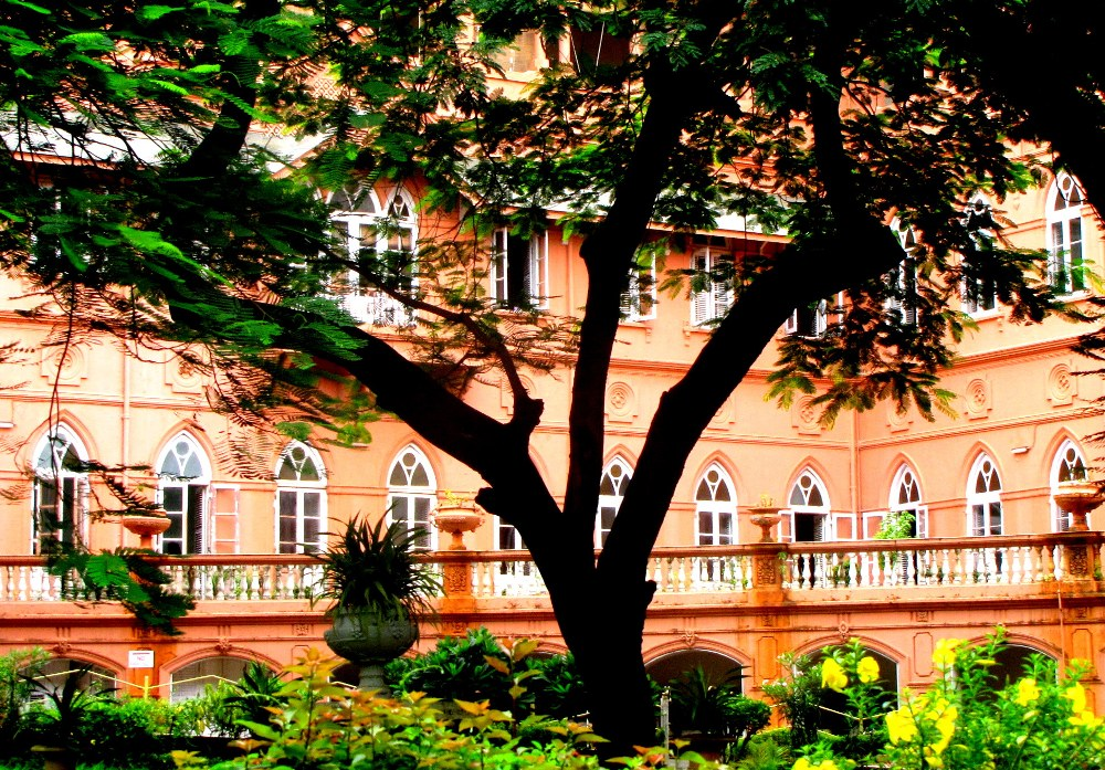List of 10 best colleges of psychology in India