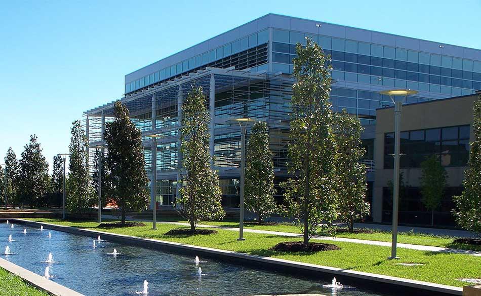 Top 10 Best Universities in Texas