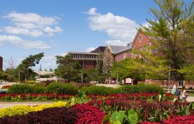 Top Ten Best Accounting Universities in Illinois