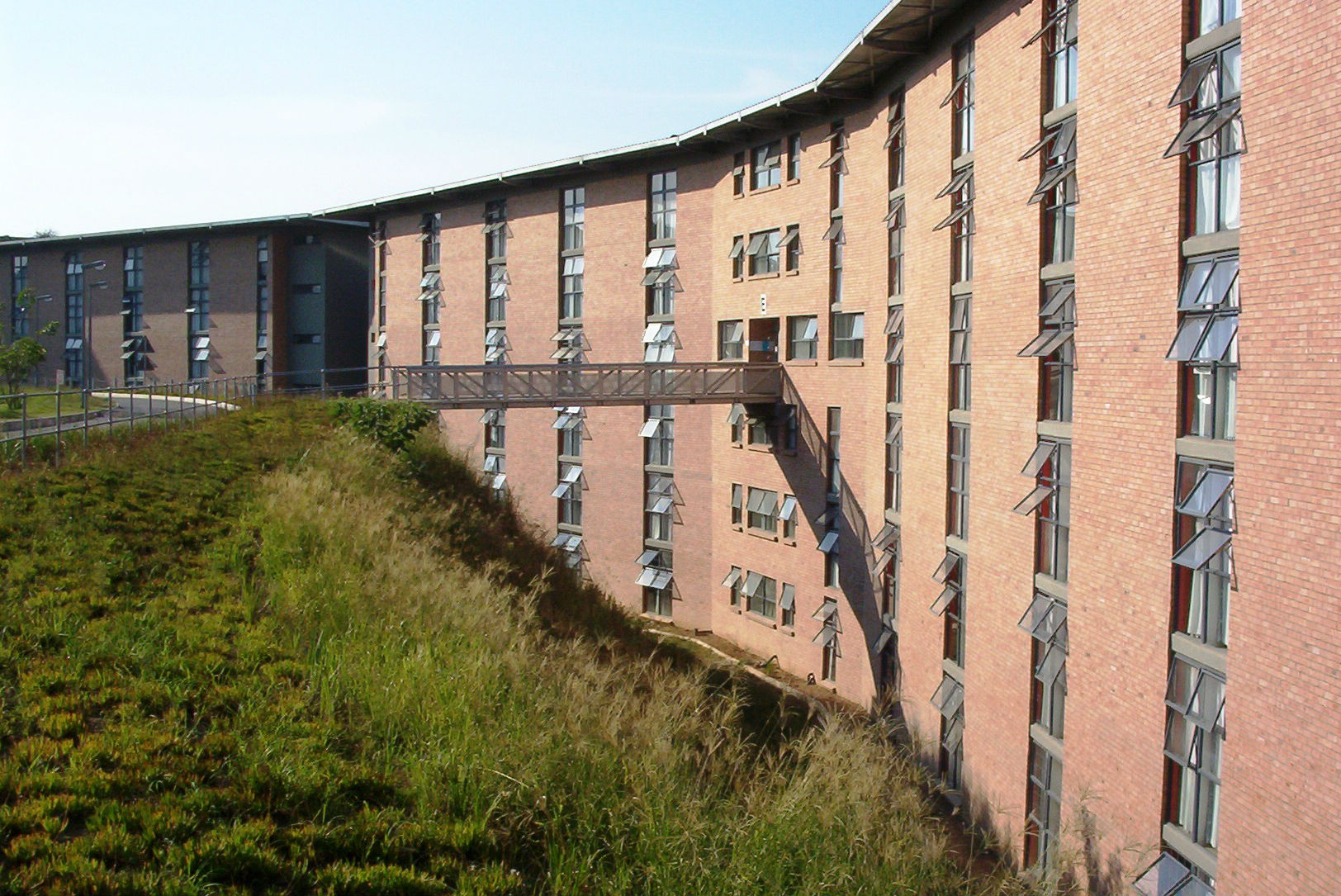 best African university