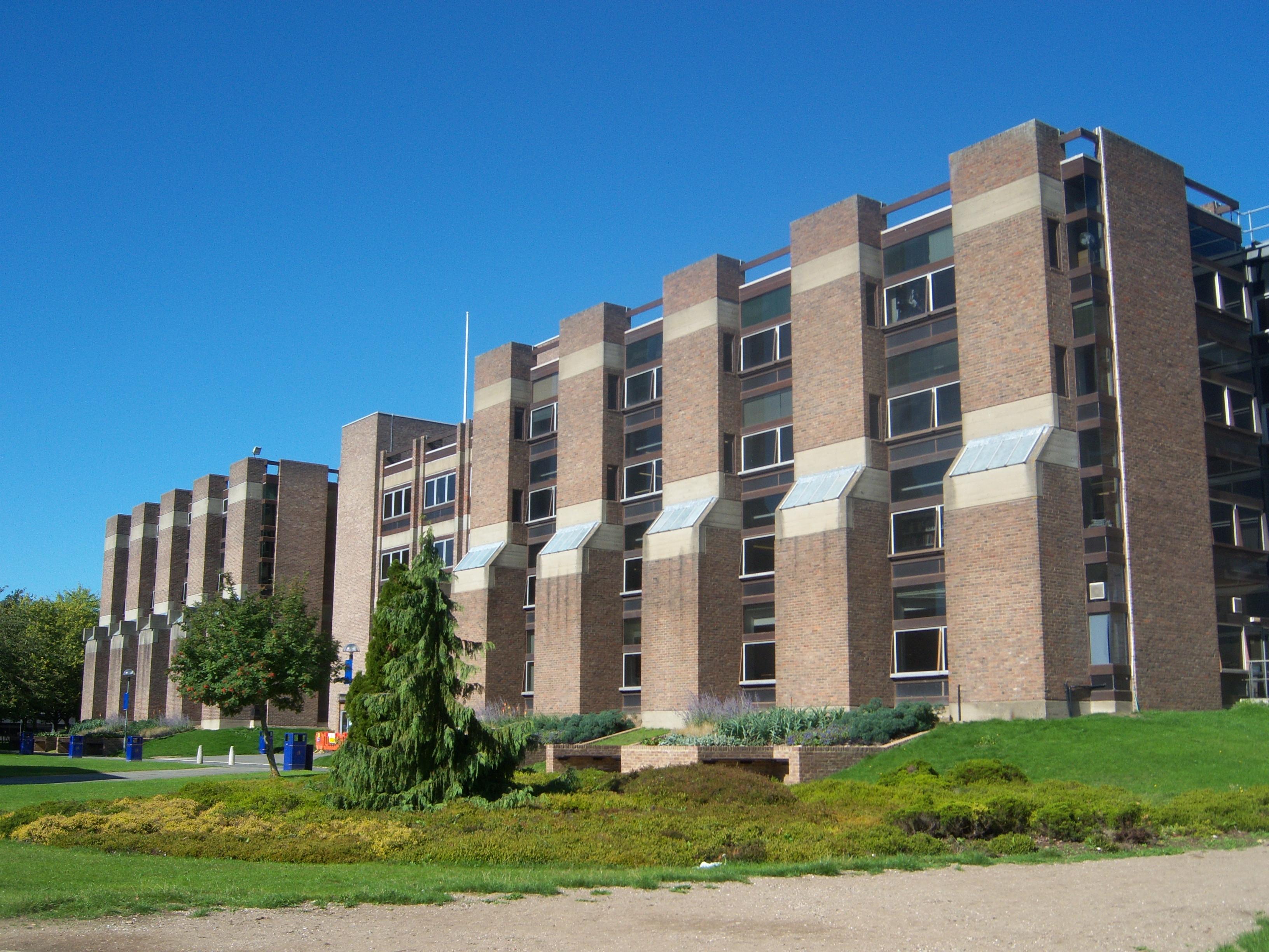 Best university for american study